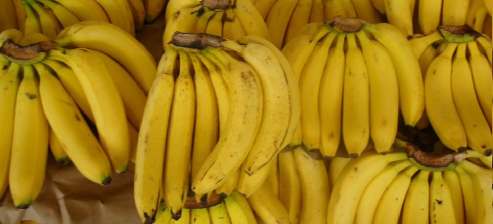 Plátano Tabasco