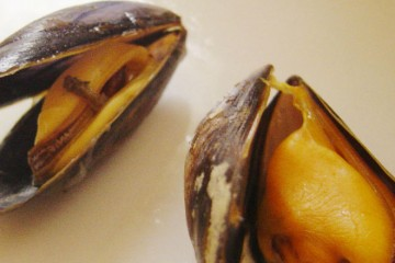 Cooked_mussels_DSC09244