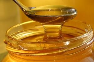 Miel de abeja yucatan