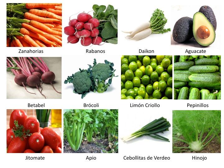 Productos Gastronautas 2