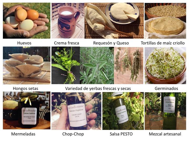 Productos Gastronautas 3